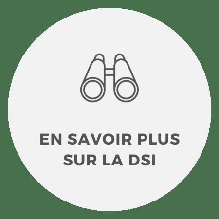 En savoir plus sur la DSI