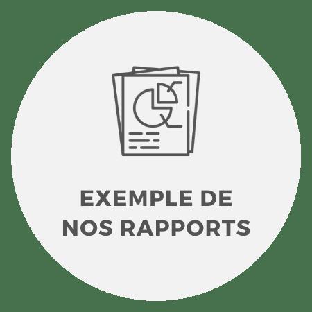 Exemple de nos rapports